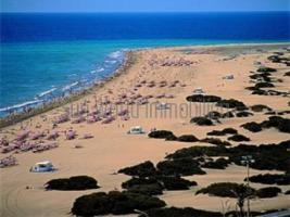 Immobilien Gran Canaria - Bungalows - Appartments - Villen / Mieten und Verkauf