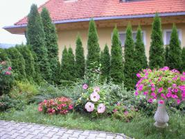 Foto 8 Immobilien in Ungarn, Hévíz