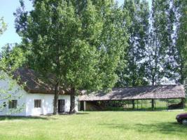 In Ungarn ein Bauernhaus mit Fischteich und 3ha Land ist zu verkaufen