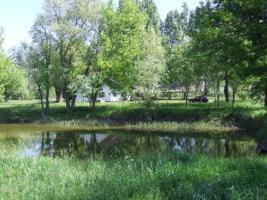 Foto 2 In Ungarn ein Bauernhaus mit Fischteich und 3ha Land ist zu verkaufen