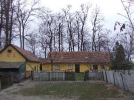 Foto 2 In Ungarn ein tipisches Bauernhaus mit 3ha Land