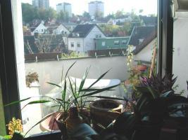 Foto 9 Interessantes EF-Reihenhaus in Dudweiler mit ger�umigem Studio! ELW m�glich!(3940-1380)
