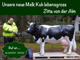 Foto 3 Ist das nicht Cool Sie zahlen beim Deko Pferd und Deko Melk Kuh kauf keine Deutsche MWST. ok. Sie müssten schon in die Schweiz liefern lassen…