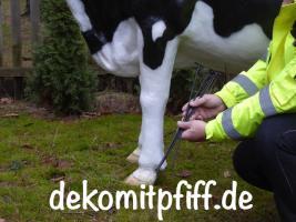 Foto 7 Ist das nicht Cool Sie zahlen beim Deko Pferd und Deko Melk Kuh kauf keine Deutsche MWST. ok. Sie müssten schon in die Schweiz liefern lassen…