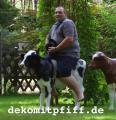 Kalb, Holstein,   Flecki  , schwarz weiss, belastbar, 128cm / HAEIGEMO  Artikel-Nr.: 2300