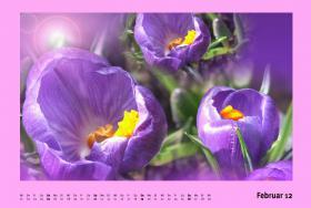 Foto 4 Kalender 2012 - Designer-Kalender für ein schönes Ambiente