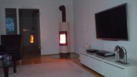 Kaminofen Lisbboa von Haase mit Glasplatte und Holz zu verkaufen