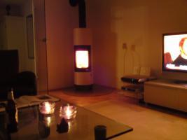 Foto 2 Kaminofen Lisbboa von Haase mit Glasplatte und Holz zu verkaufen