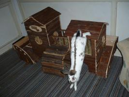 Foto 2 Kaninchen-/ Meerschweinchen- Abenteuerlandschaft