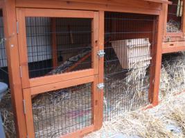 Foto 3 Kaninchenstall mit Heuraufe und Schutzhülle