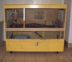 Kaninchenstall - 2 Etagen