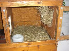 Foto 5 Kaninchenstall, Selbstbau