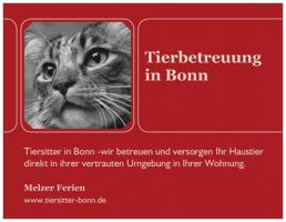 Katzensitter in Bonn
