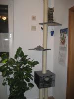 Foto 6 Katzenzubehör