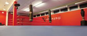 Foto 2 Kickboxen in Linz