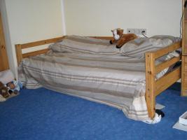 Kieferzimmer Kleiderschrank, (Hoch-)Bett, Schrank, Regal