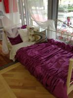 Foto 5 Kissen, Vorhänge, Bettwäsche, Tagesdecke