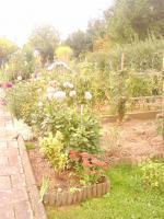 Foto 2 Klein Garten