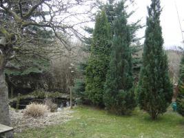 Klein-Garten in Gaarden-Süd