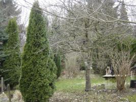 Foto 7 Klein-Garten in Gaarden-Süd