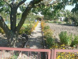 Foto 4 Klein Garten Pacht Laube Terrasse in 15306 Seelow abzugeben