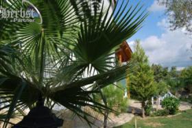 Foto 8 Kleine Villa in Avsallar