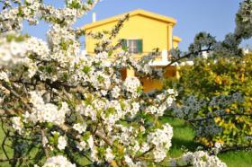 Kleine romantische Hotel/Pension auf Sardinien zu verpachten