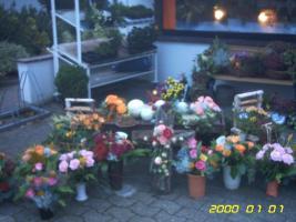 Foto 5 Kleiner Blumenladen