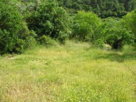 Kleines Baugrundstück auf Methana/Griechenland