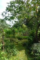 Foto 8 Kleines Paradies mit geborgter Landschaft