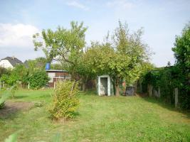 Foto 2 Kleingarten in Altenhain zwischen Naunhof und Grimma / Sachsen zu verpachten