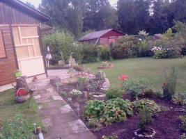 Foto 5 Kleingarten in Bergedorf