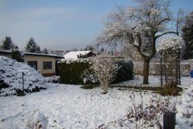 Foto 2 Kleingarten mit Bungalow in Leipzig