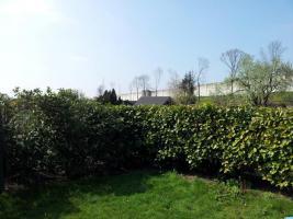 Foto 3 Kleingarten in Duisburg-Duissern zu verkaufen.