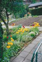 Foto 5 Kleingarten in Duisburg/Duissern zu verkaufen