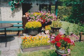 Foto 6 Kleingarten in Duisburg/Duissern zu verkaufen