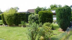 Foto 5 Kleingarten in Duisburg zu verkaufen