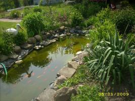 Foto 4 Kleingarten in Genzkow M/V