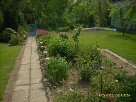 Foto 5 Kleingarten in Genzkow M/V