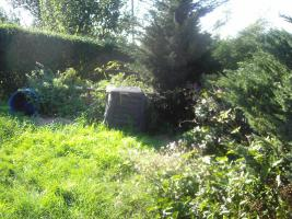 Foto 3 Kleingarten Greiz-Irchwitz
