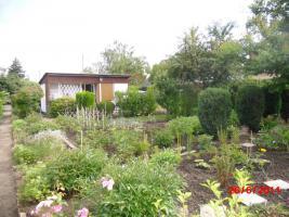 Kleingarten in Halle Saale zu verkaufen