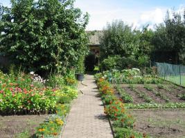 Foto 2 Kleingarten mit Haus Wolfsburg/Hattorf