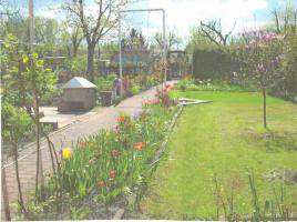Kleingarten in Luckenwalde