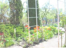 Foto 3 Kleingarten in Luckenwalde