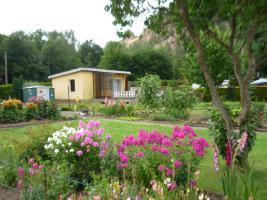 Foto 2 Kleingarten in Meißen 505m²