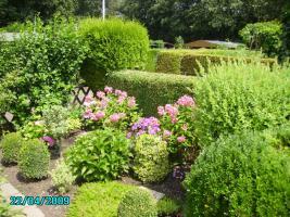 Foto 3 Kleingarten in Moers-Kohlenhuck