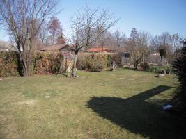 Foto 9 Kleingarten abzugeben