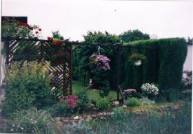 Foto 5 Kleingarten altershalber abzugeben