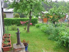 Foto 3 Kleingarten preiswert abzugeben