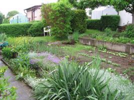 Foto 6 Kleingarten preiswert abzugeben
